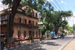 Prapaditya-Road,-Southern-Avenue